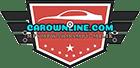 carownline-footer-logo